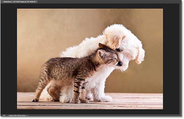 imagen de interfaz de photoshop