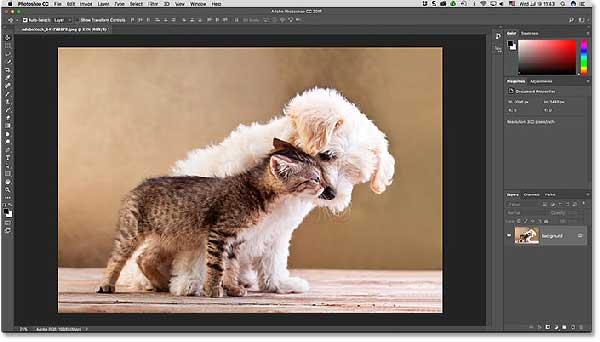 interfaz de trabajo de photoshop