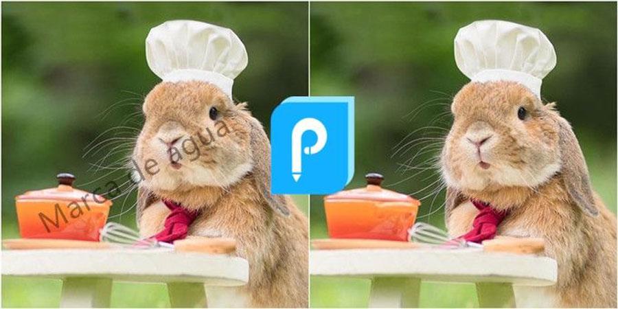 remover marca de agua de una foto
