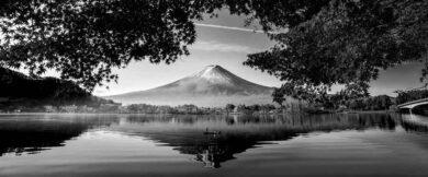 blanco y negro con Photoshop